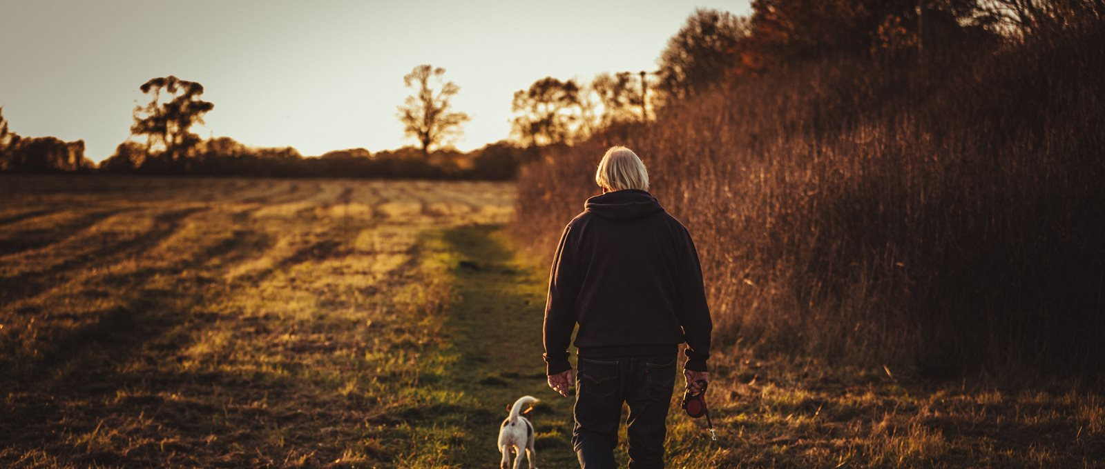 Person Walking With Puppy Near Trees 1587242